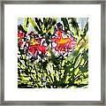 Divine Blooms-21166 Framed Print