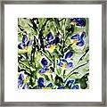 Divine Blooms-21169 Framed Print