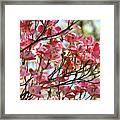 Dogwood Tree Landscape Art Prints Blue Sky Baslee Troutman Framed Print