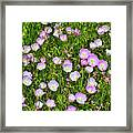 Dotted Meadow Framed Print