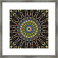 Dotted Wishes No. 4 Kaleidoscope Framed Print