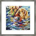Double The Trouble Framed Print