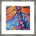 Dragonfly F Framed Print