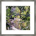 Dream Reflections Framed Print by David Lloyd Glover