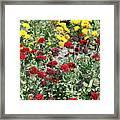 Dubai Flowers Framed Print