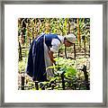 Early Settler Farming Framed Print