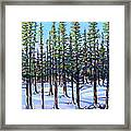 Early Spring, Trees In Training Framed Print