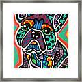Eddie Framed Print