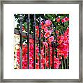 Elegant Fence Framed Print