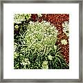 Emergence 3 Framed Print