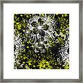 Eve Series 3 Framed Print