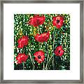 Every Dream Turns Up Poppies Framed Print