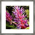 Exotic Flora Framed Print