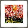 Exploding Nature Framed Print