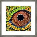 Eye Dragon Forest Framed Print