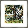 Fall Shapes Roky Point Park Framed Print