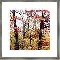 Fall Splatter Framed Print by Deborah  Crew-Johnson