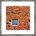 Fall Window Framed Print