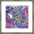 Fancy Fish On A Monday  Framed Print