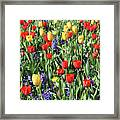 Fields Of Beauty 62 Framed Print