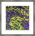 Fine Wine Cafe Colorful Garden Framed Print