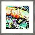 Fish Under Water Framed Print