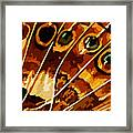 Five Eyes Framed Print