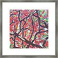 Flamboyant Beauty Framed Print