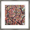 Flamboyants In The Sky Framed Print