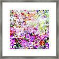 Floral Art Clvi Framed Print
