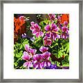 Floral Design 5 Dark Framed Print
