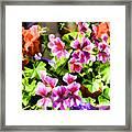 Floral Design 5 Light Framed Print