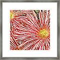Floral Design No 1 Framed Print