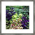 Floral Print 005 Framed Print