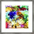 Floresta Framed Print
