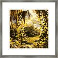 Florida Dream Framed Print