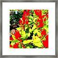 Flower Flames Framed Print