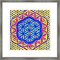 Flower Of Life Fractle Framed Print