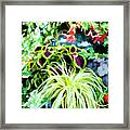 Flowers In Garden 3 Framed Print