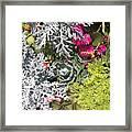 Flowers Of Boca II Framed Print