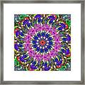 Flowers Of The Mind Number 2 Peacock Feathers Framed Print