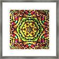 Flowerscales 62 Framed Print