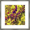 Focus Of Attention 8 Framed Print