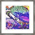 For Sun Lovers Framed Print