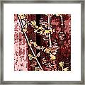 Forsythia Branch Framed Print