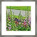 Foxglove In Front Of Conservatory In Golden Gate Park In San Francisco, California  Framed Print