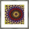Fractal Outburst Catus 1 No. 10 - Sunsettia For Lea Framed Print