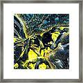 Freedom For Margot Framed Print