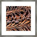 Fronds  Framed Print