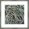 Frozen Grass - Ground Frost Framed Print